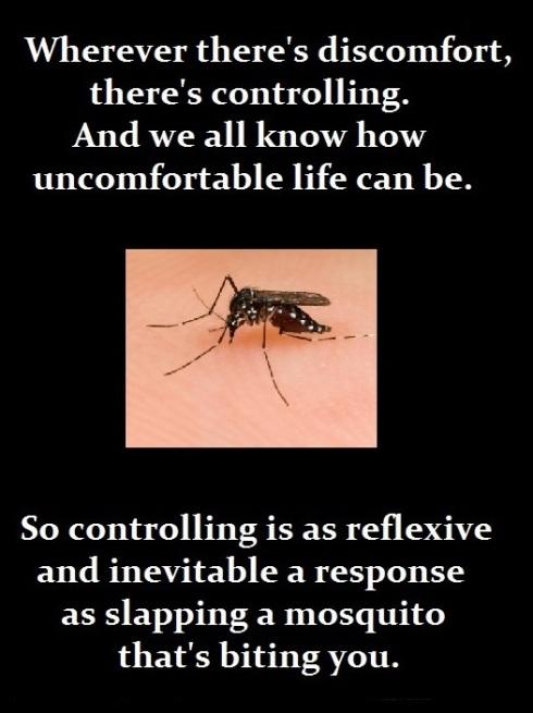 1-8-16 Mosquito2