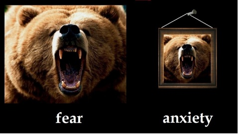~~~fear vs anxiety